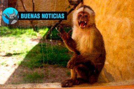 Zoológico de Arequipa recibirá más de 8 mil soles para atender animales
