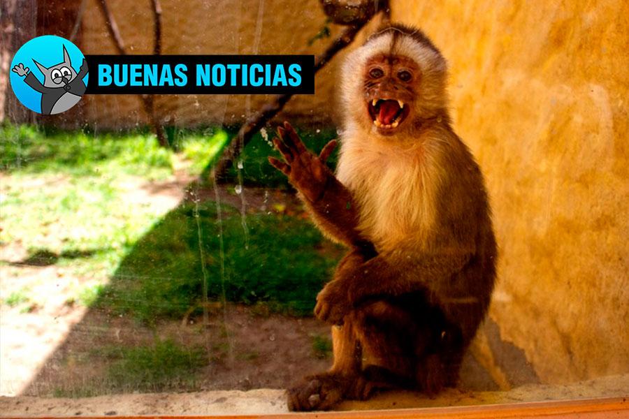 buenas noticias Arequipa zoologico