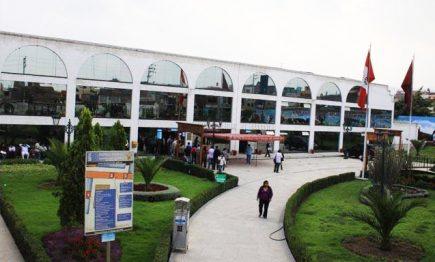Municipalidad dejó prescribir más de 300 papeletas de tránsito