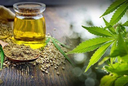 Algunos beneficios del CBD o Cannabis Medicinal para la salud