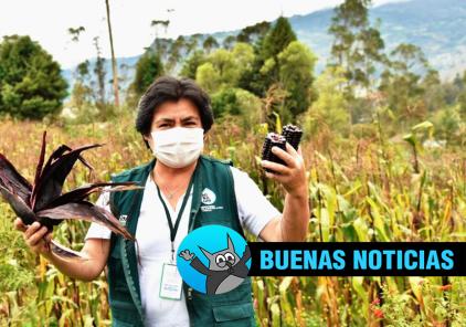 Chile premiará a investigadora peruana por su trabajo con el maíz morado