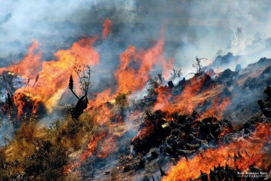 Incendios forestales Peru
