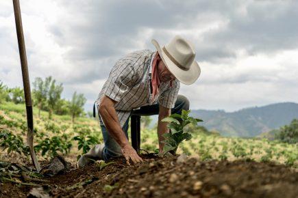 Presidente de agroexportadores recomienda no invertir en Majes Siguas II