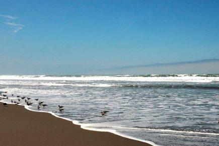 Playas de Arequipa: ¿cómo será el verano este año debido al Covid?