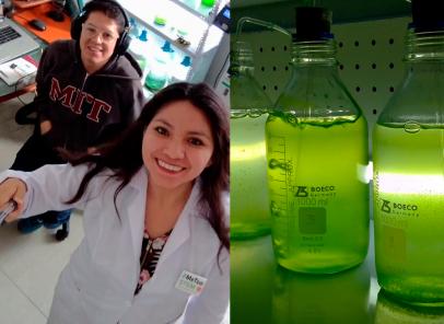 Athali Castro: la joven arequipeña que creó biorreactores con algas