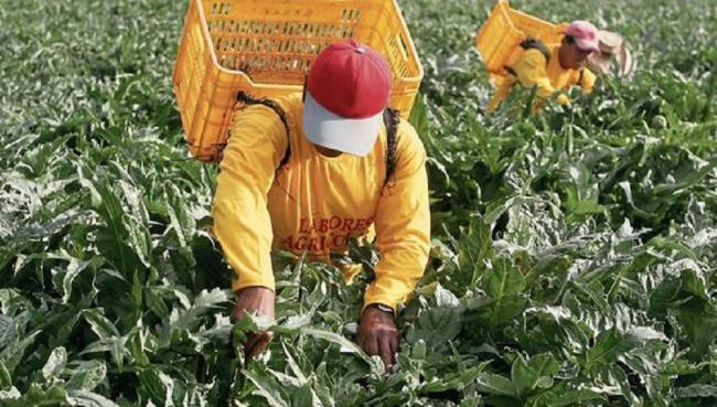 trabajo en el Perú