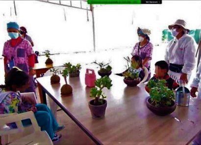 Arequipa: niños con discapacidad producen alimentos orgánicos en biohuertos