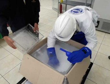 Arequipa: llegan más de 8 mil nuevas dosis de vacunas Pfizer contra covid-19