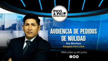 Pico a Pico: las audiencias de nulidad de actas en el JNE