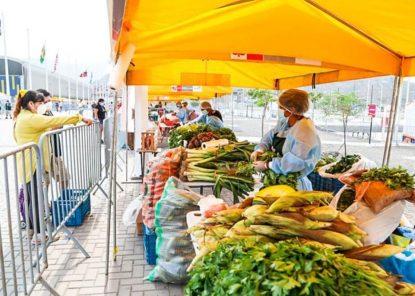 ¿Por qué están subiendo los precios de los alimentos y qué hacer al respecto?