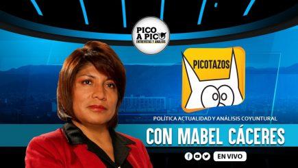 Pico a Pico: los retos del gobierno de Pedro Castillo