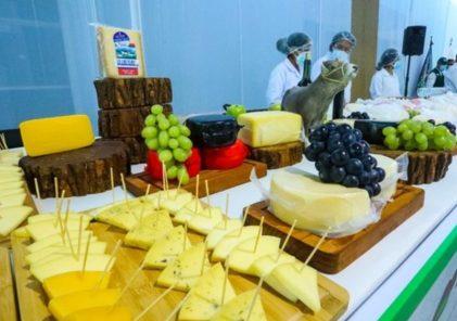 Los mejores quesos se producen en Arequipa y Puno según concurso