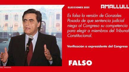 FALSO. Gonzales Posada: (Sentencia del PJ) le niega competencia al Congreso de elegir miembros del TC