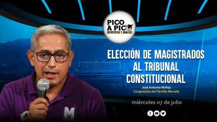 Pico a Pico: la elección de nuevos magistrados del Tribunal Constitucional