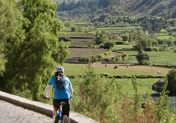 Arequipa: evalúan que campiña de Sachaca albergue una ciclovía turística