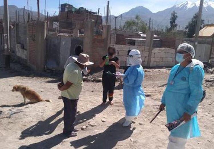 Arequipa: buscan a dueños de can muerto en Cerro Colorado, tras confirmarse rabia.