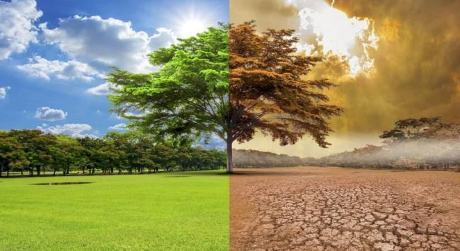 Cambio Climático: derrotemos la retórica