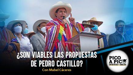 Pico a Pico: ¿Son viables las propuestas de Pedro Castillo?