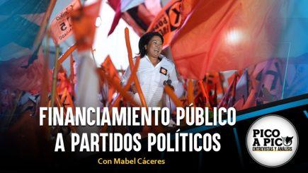 Pico a Pico: Financiamiento público a partidos políticos
